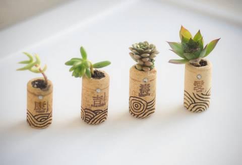 12-bonitas-formas-de-decorar-la-casa-con-plantas-de-interior-tapones-de-corcho