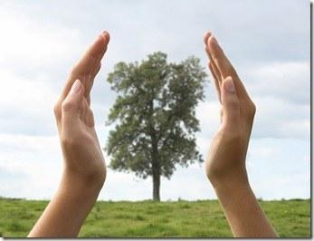 manos-arbol