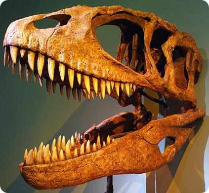 Carcharodontosaurus, dinosaurios más grandes