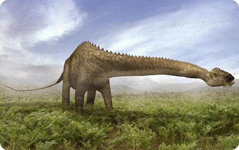 dinosaurio, diplodocus