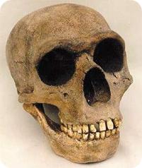 Sonrisa neandertal
