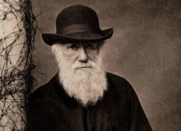 que-es-la-evolucion-charles-darwin