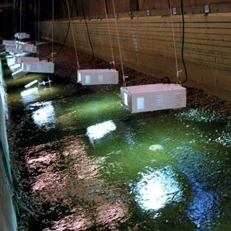 Mejorar la calidad del agua