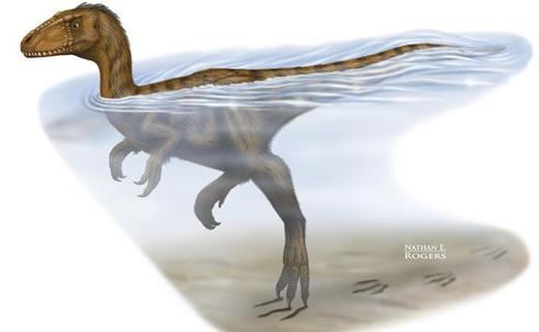 dinosaurio nadador