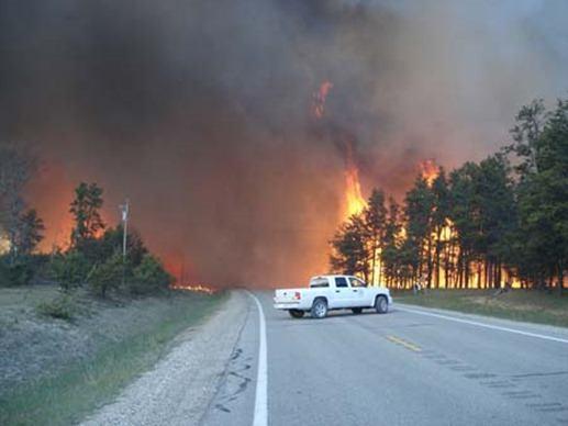 coche e incendio forestal