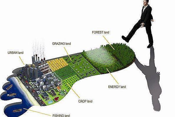 Día Mundial del Medio Ambiente-huella ambiental