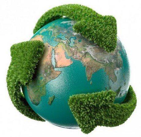 luchar contra la desforestación