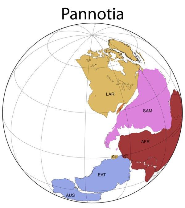 PANNOTIA