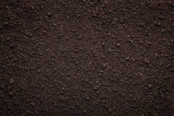 Tipos de suelos humiferos o de tierra negra