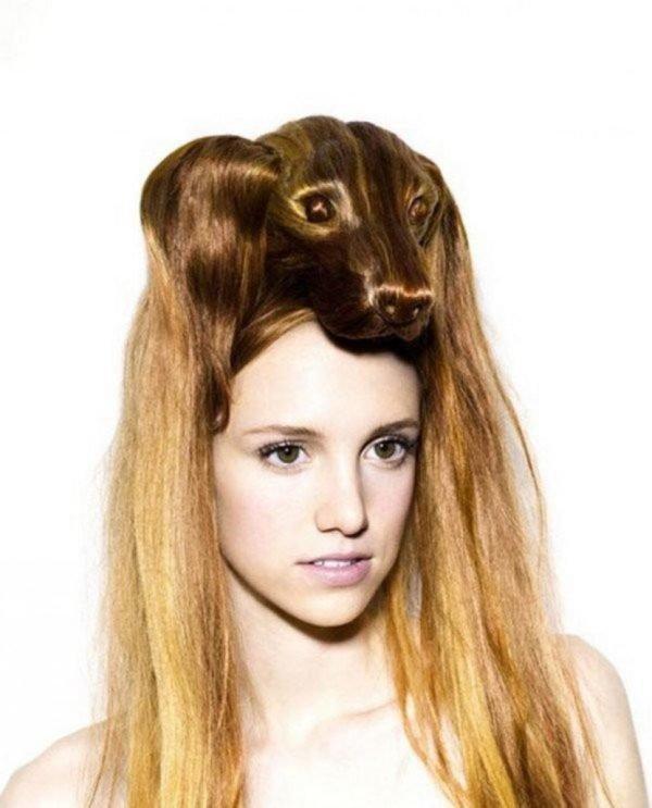 peores-peinados-perro-salchicha