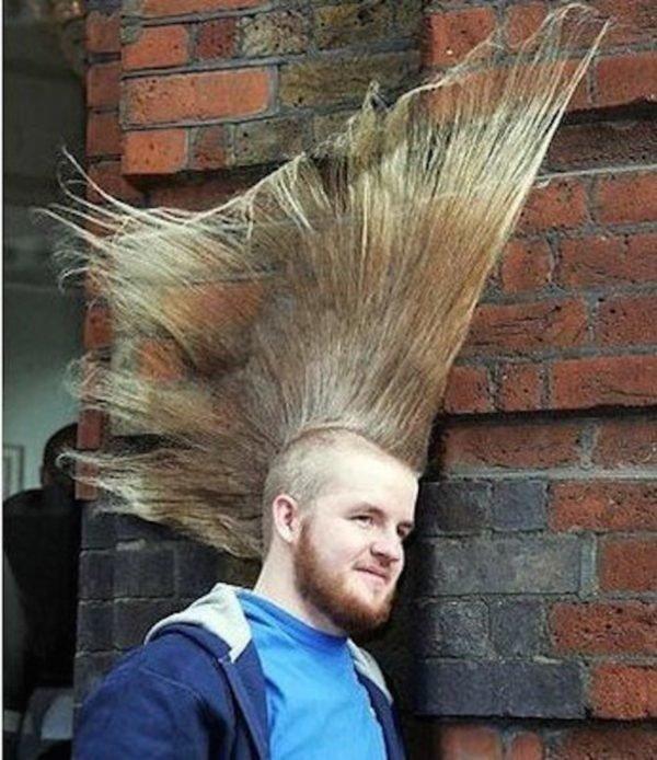 peores-peinados-telarana