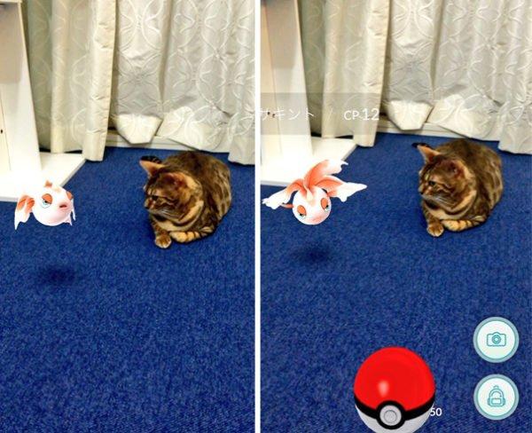 leyenda-japonesa-animales-ven-pokemon-1