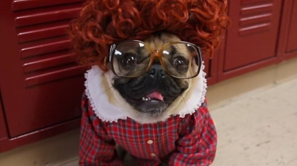 disfraz-stranger-things-barbara-perro