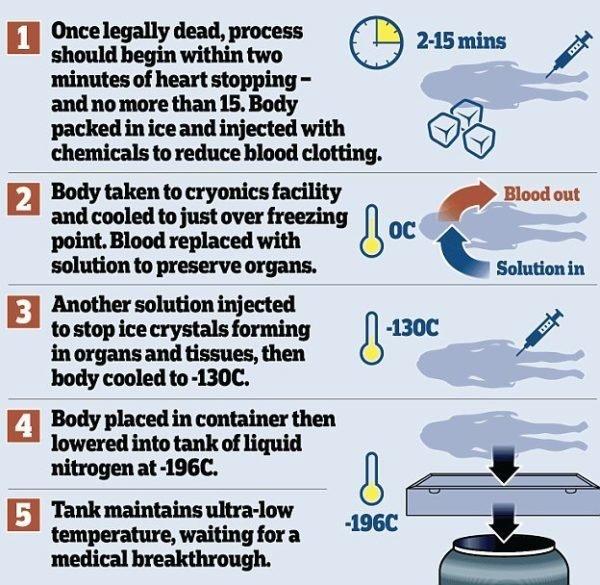 proceso-de-criopreservacion