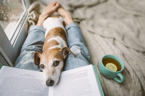 planes-para-hacer-en-casa-cuarentena-coronavirus-chica-leyendo-con-perro-istock