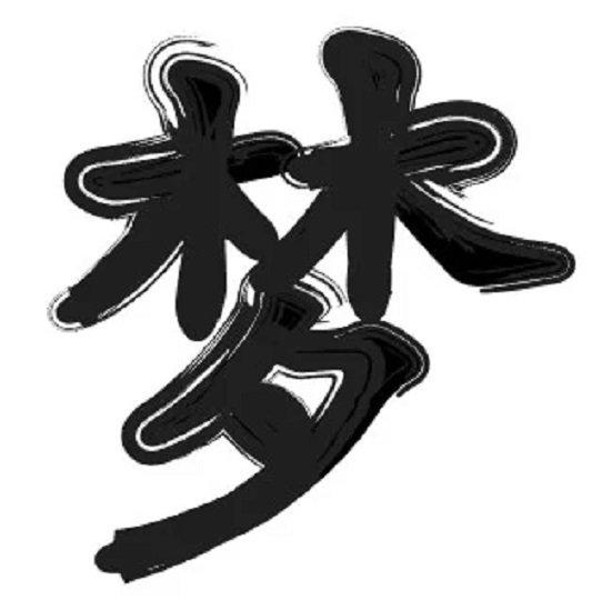 Letras chinas para tatuajes 2021 SUEÑO