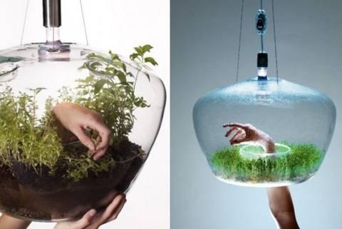 12-bonitas-formas-de-decorar-la-casa-con-plantas-de-interior-lampara