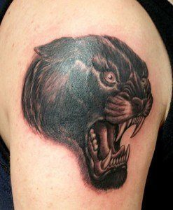 2008_01_pantera_tetovaza