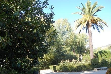 fotos de jardines-16