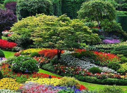 fotos de jardines-3