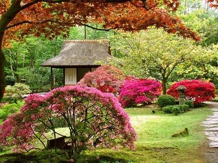 fotos de jardines-7