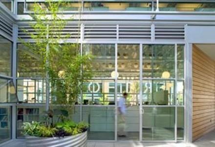 plantas de interior_2