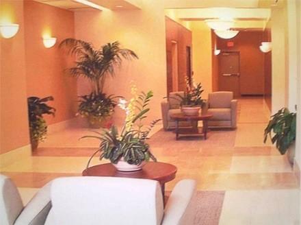 plantas de interior_9