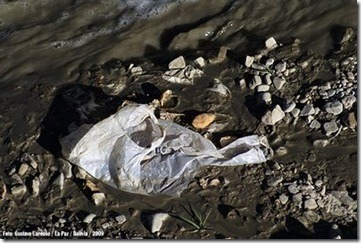 Contaminación por bolsas plasticas Foto Gustavo Cardoso