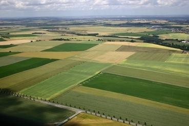 Contaminación de la tierra o el suelo