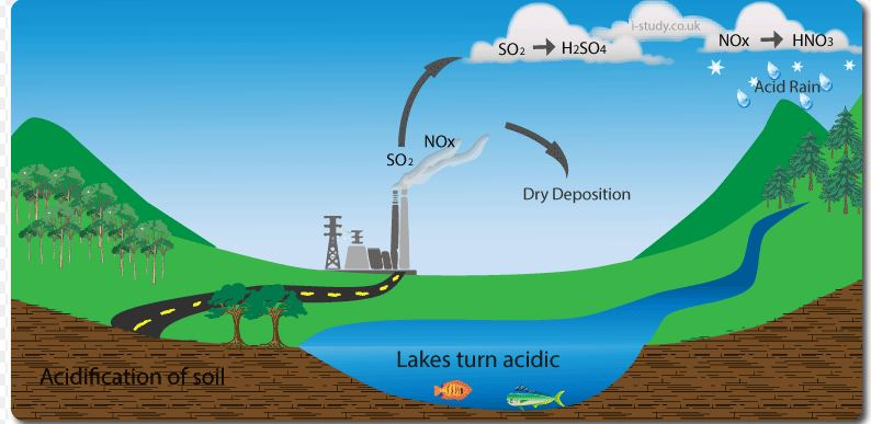 an analysis of the components effects and possible solutions of acid rain Acid rain is any form of precipitation that contains acidic components, such as  sulfuric or nitric acid acid rain affects nearly everything: plants,.
