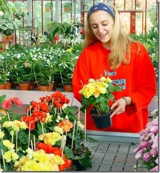 plantas-de-flor