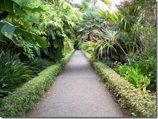 2d9c894a4ede7276ad177356e9fc0471_0_576x576_jardin-botanico-puerto-de-la-cruz