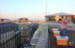 Louis Vuitton lanza ahora tarros de miel