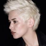 Peinados de Moda 201210
