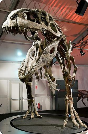 Giganotosaurus, dinosaurios más grandes
