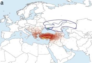 indoeuropeos