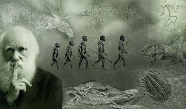 la-evolucion-como-teoria-cientifica