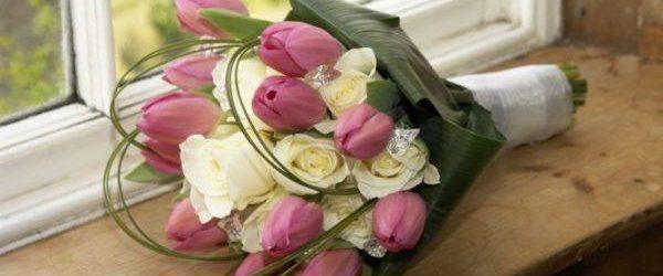 Plantas y Flores para San Valentín