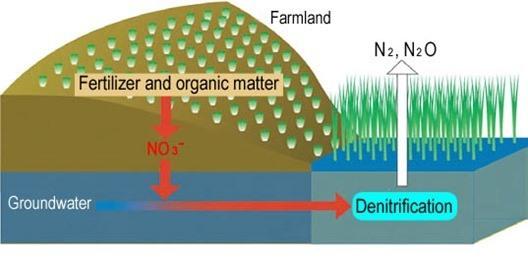 Mejorar la calidad del agua subterránea  Desnitrificación