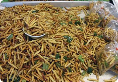Oruga del bicho taladro del bambú, cocida y lista para comer.