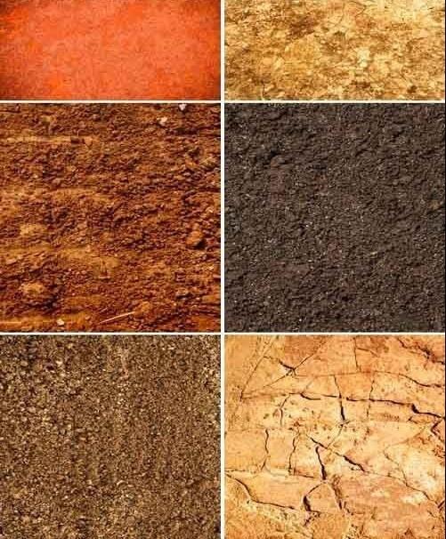 Tipos de suelos for Materiales que componen el suelo
