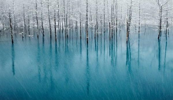 12 maravillosos paisajes de invierno