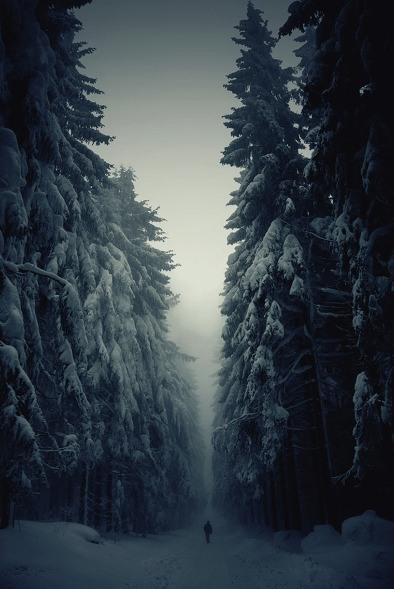 Fotos.de_.invierno.jpg