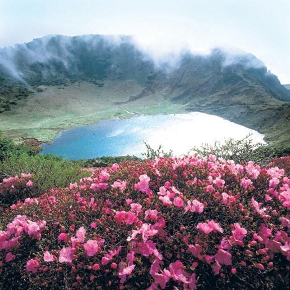 Jeju isla.