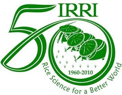 Instituto-Internacional-de-Investigación-del-Arroz-(IRRI)