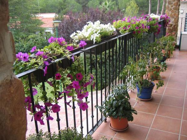 jazmin balcon
