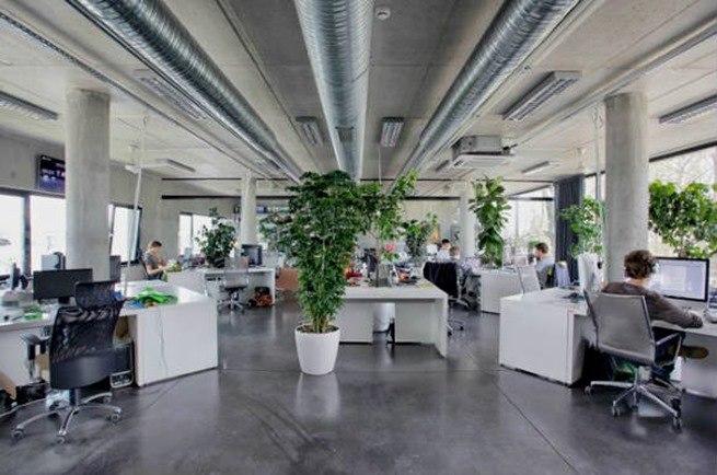 plantas mejoran la productividad
