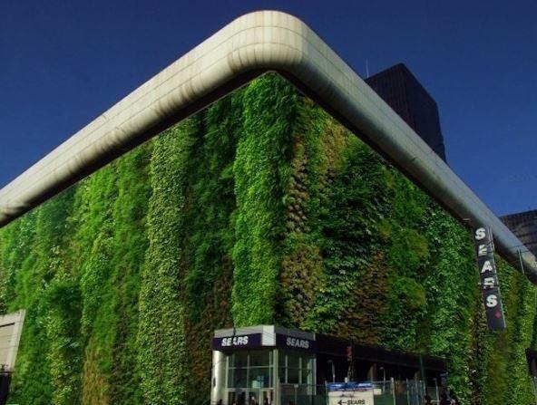 mejores-jardines-verticales6.jpg
