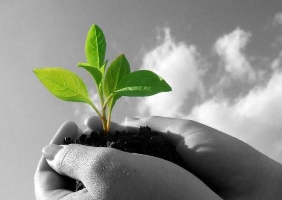 politicas-calidad-ambiental.jpg
