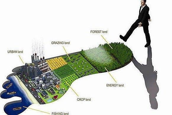 huella-ambiental_thumb.jpg